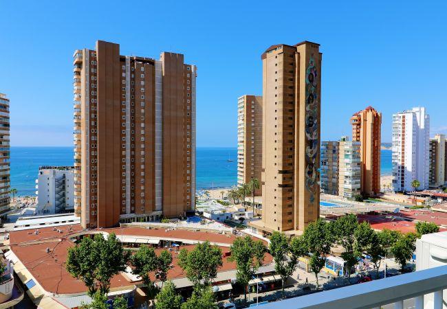 Benidorm - Apartamento