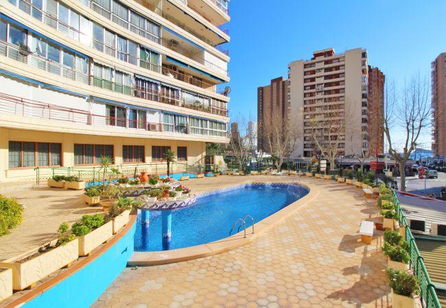 Benidorm - Apartment