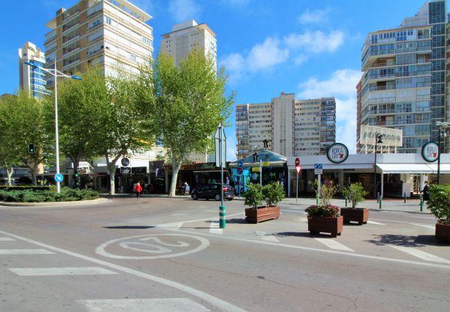 Apartamento en Benidorm - Los Pinos 9B