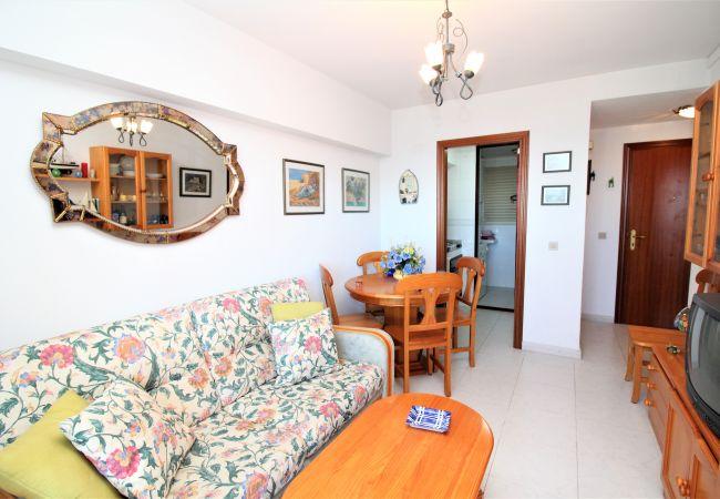 Apartamento en Benidorm - Gemelos 15-15-D