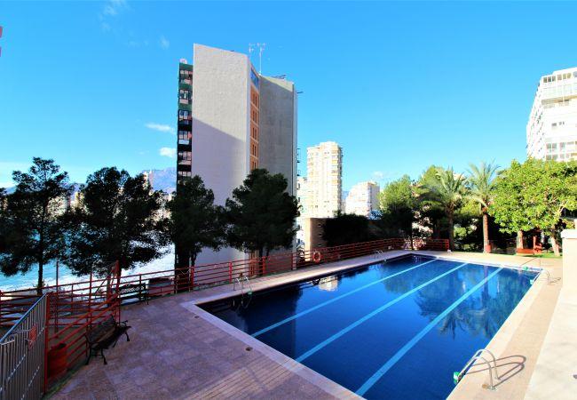 Apartamento en Benidorm - Don Miguel 15-F