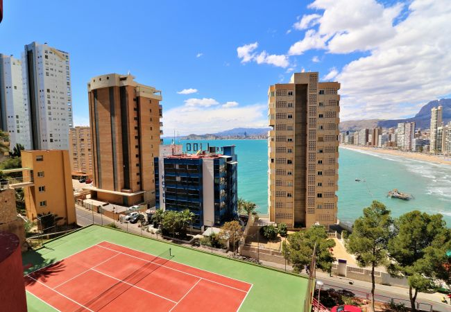 Apartamento en Benidorm - Don Miguel 3-F