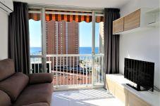 Apartamento en Benidorm - Albatros 12-8