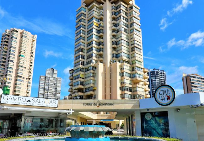 Apartamento en Benidorm - Torre Benidorm 15-1