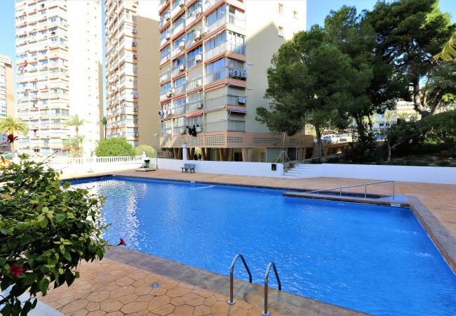 Apartamento en Benidorm - Don Miguel 1 4-B