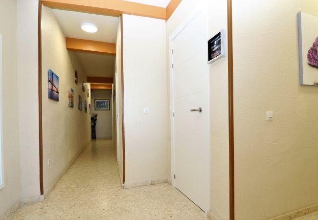 Apartamento en Benidorm - Lux Center 5-D