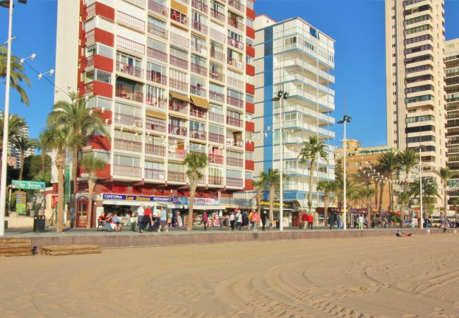 Apartment in Benidorm - Las Damas 14B