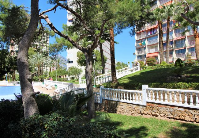 Apartment in Benidorm - Play Park 33