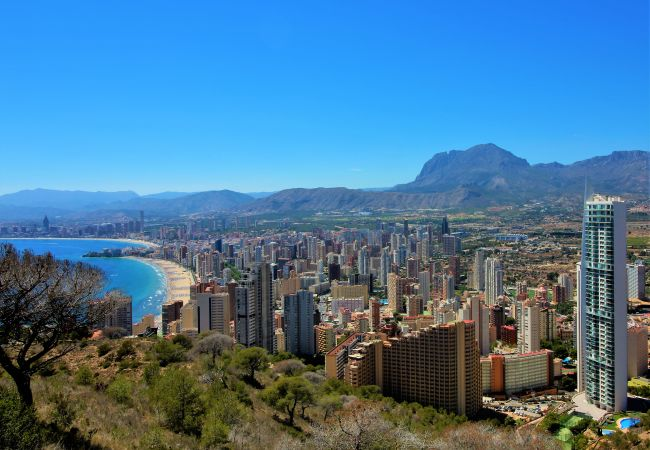 Apartment in Benidorm - Torre Lugano