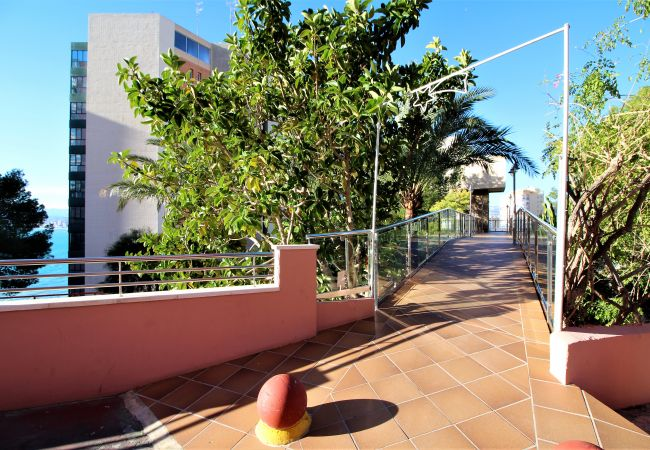 Apartment in Benidorm - Don Miguel II 4-F