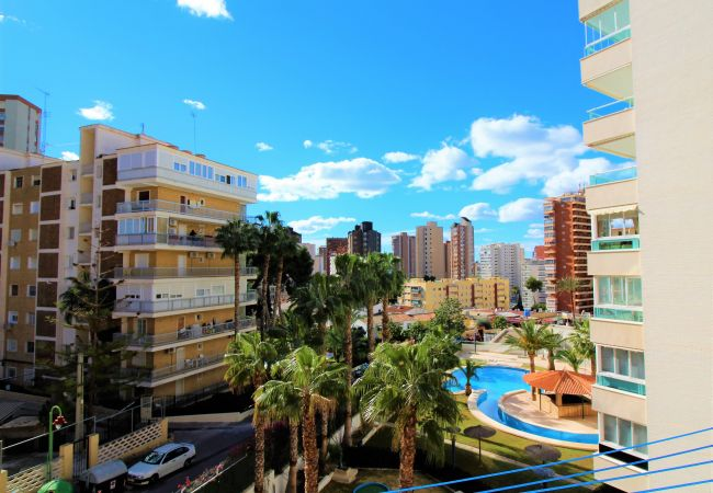 Apartment in Benidorm - Tower Benidorm 42