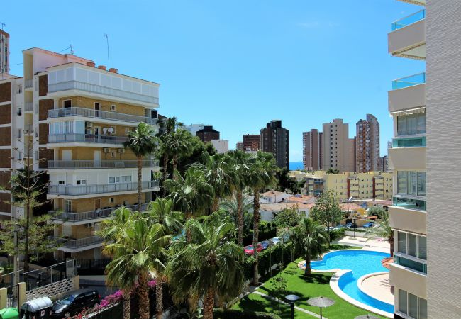 Apartment in Benidorm - Tower 43