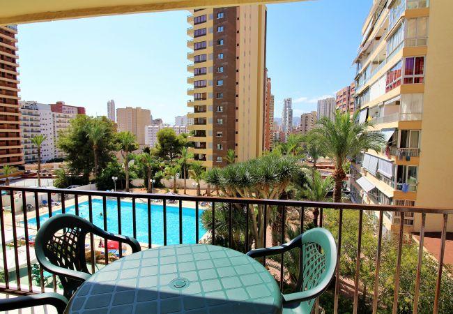 Apartment in Benidorm - Bermudas 314