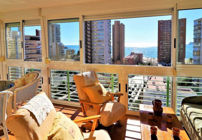 Apartment in Benidorm - Niza 11-A