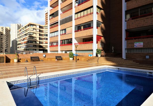 Apartment in Benidorm - Loix Mar 11-E