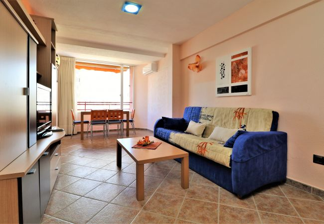 Apartment in Benidorm - Don Miguel 3-F