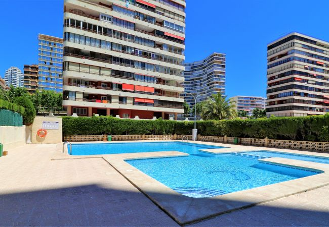 Apartment in Benidorm - Veracruz 18-A