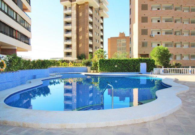 Apartment in Benidorm - Trinisol II-3
