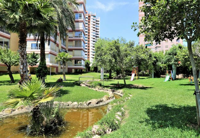 Apartment in Benidorm - Lidersol 11-D