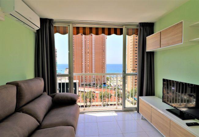 Apartment in Benidorm - Albatros 12-8