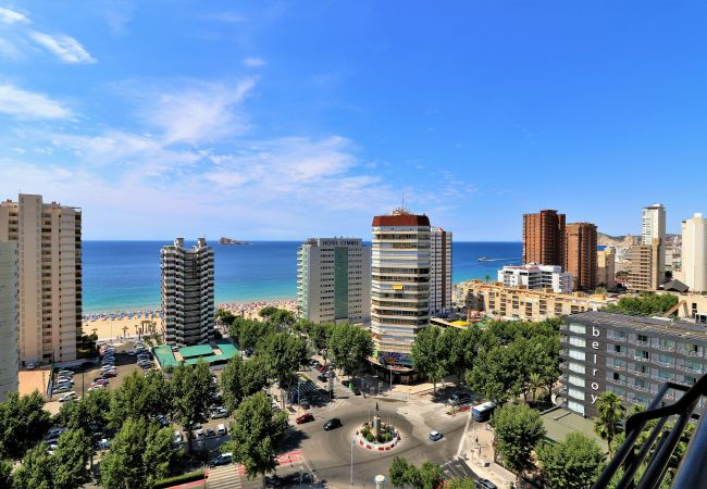 Apartment in Benidorm - Torre Benidorm 15-1