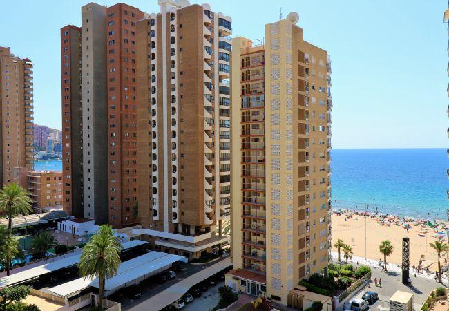 Apartment in Benidorm - Bacana 9-4