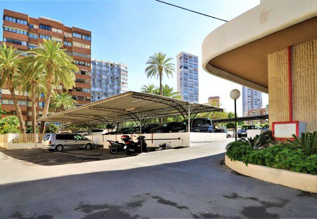 Apartment in Benidorm - Las Arenas 17-P