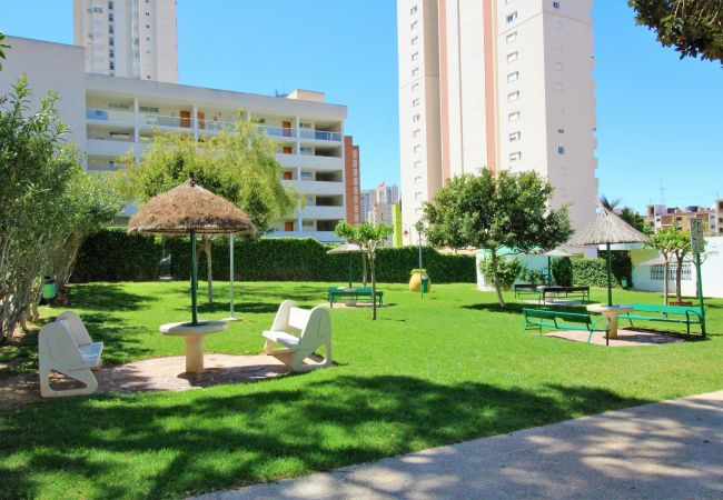 Studio in Benidorm - Playmon Park C-39