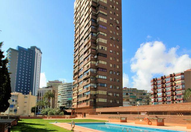 Benidorm - Апартаменты